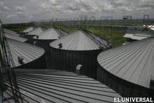 Productores e industriales del maíz reclaman aumento