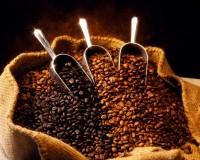 Toda la producción de café tiene que ser entregada a CVC