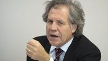 OEA sobre Venezuela: Ni un muerto, ni un herido, ni un preso...
