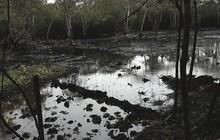 Acusan a Pdvsa de derrame petrolero en Barinas